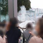 上野動物園婚活イベント♪