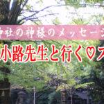 スピリチュアルコン☆第2弾!!見えちゃう陰陽師の先生によるスピ占いコン☆