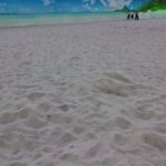 ここはビーチ!東京の砂浜🌊