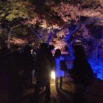 イベントレポート♪東京の婚活パーティーイベント・キャンマリー