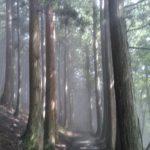 霧の三峯神社~良縁の蝶々・奥宮へ